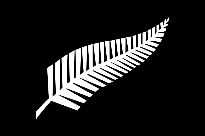 ラグビーニュージーランド代表ユニフォーム エンブレム 植物