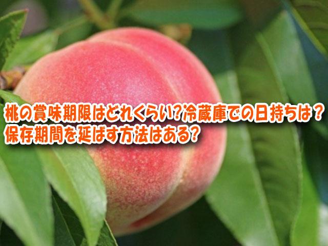 桃 賞味期限 冷蔵庫
