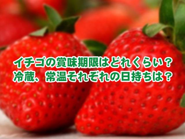 いちご 賞味期限 冷蔵庫